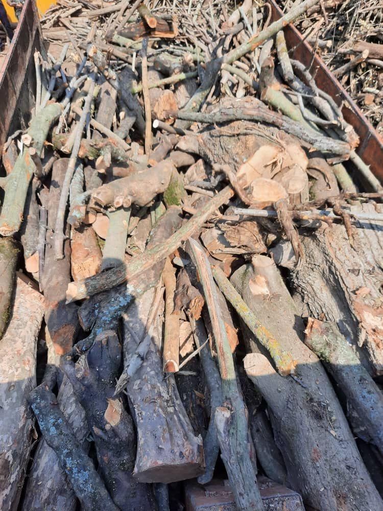 کشف و ضبط ۲۰تن چوب قاچاق در سوادکوه شمالی
